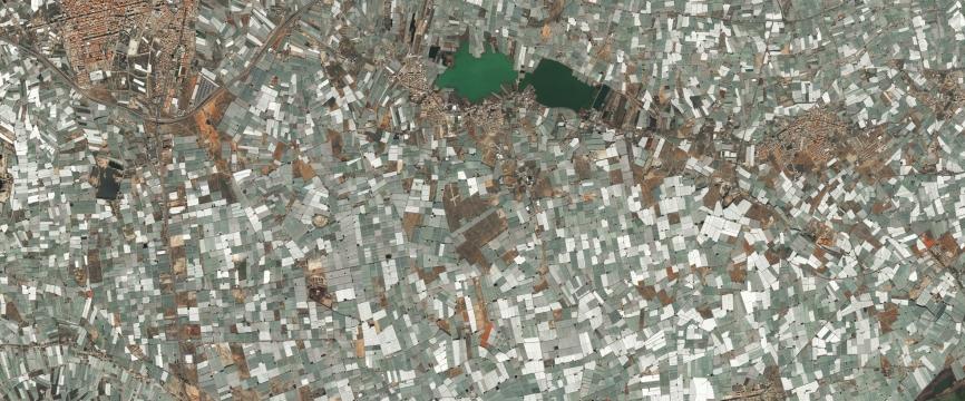 El Ejido en Andalousie : une agriculture hyper-productiviste littorale sous une mer de plastique